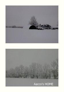 2013-12-23.jpg