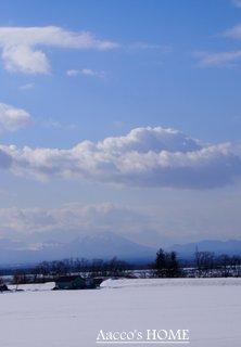 2014-01-015.jpg